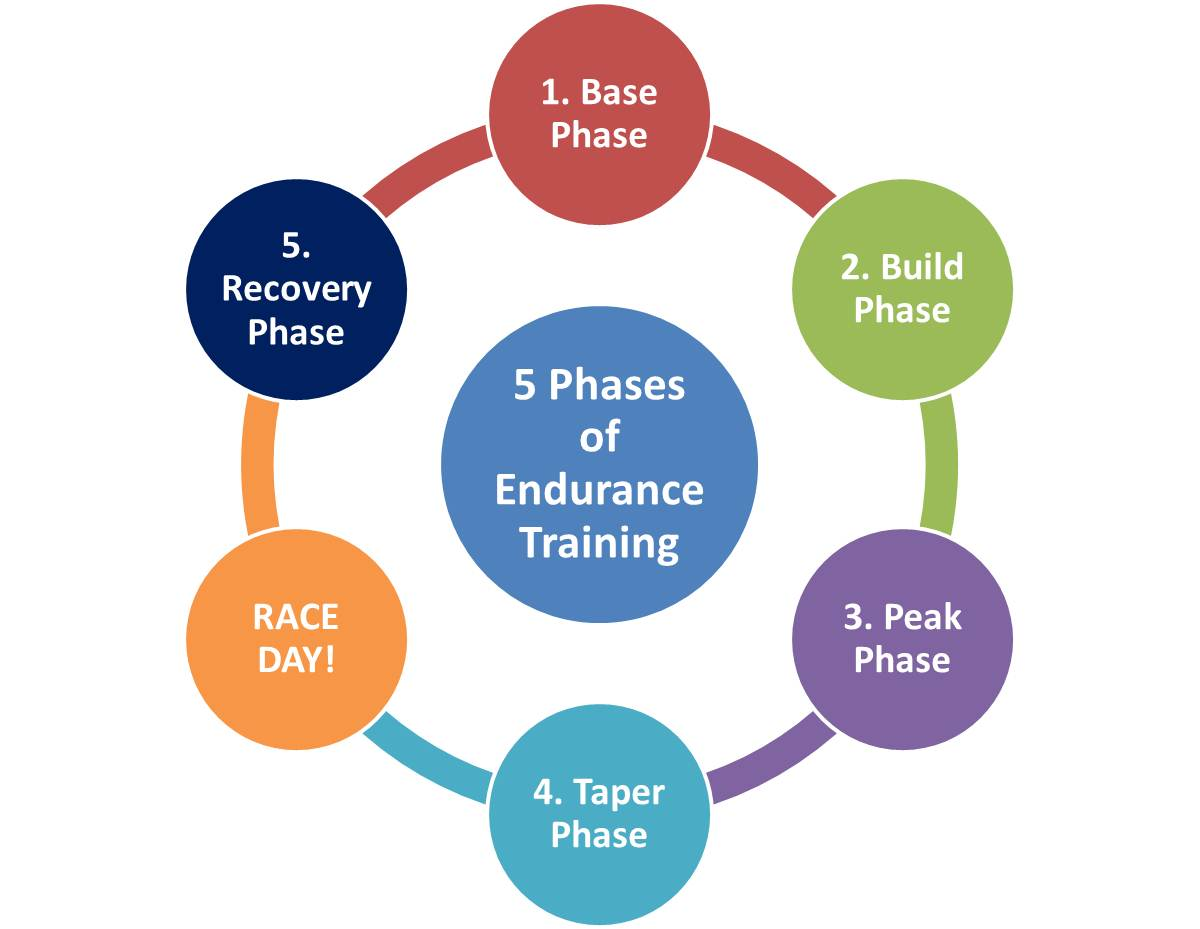 5 Phases Of Endurance Training Runladylike